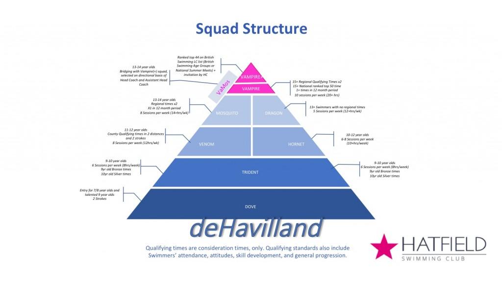 Squad structure 2018-19